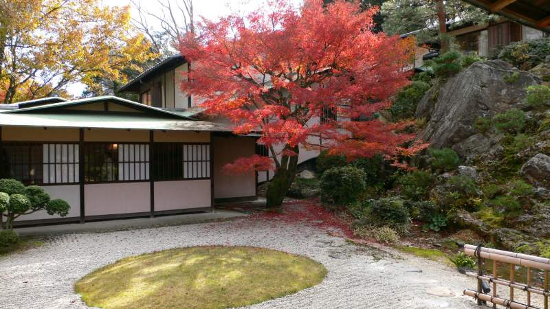 kyoto autumn red leaves